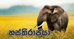 hasthirajaya